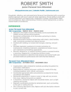 Editable Personal Care Assistant Resume Sample Pdf
