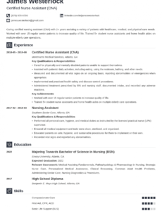 Free  Certified Nursing Assistant Resume Sample With Experience
