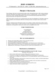 Free Online Technical Project Manager Resume Sample Pdf