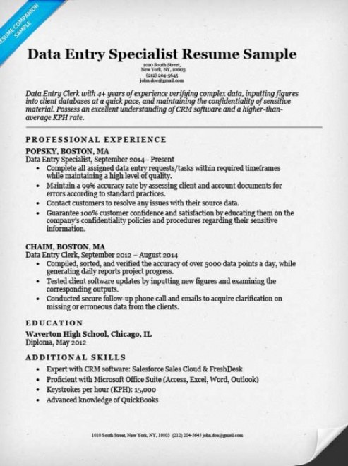 Professional Online Data Entry Resume Sample With No Experience Doc