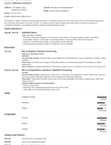 Professional Printable Data Entry Resume Sample With No Experience Word