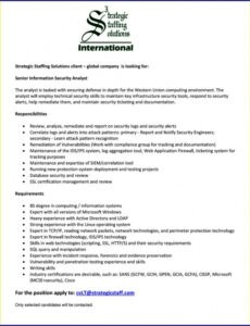Free Editable Entry Level Cyber Security Analyst Resume Sample Doc