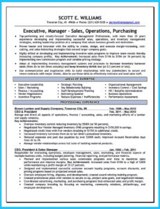 Free  Entry Level Cyber Security Analyst Resume Sample Excel