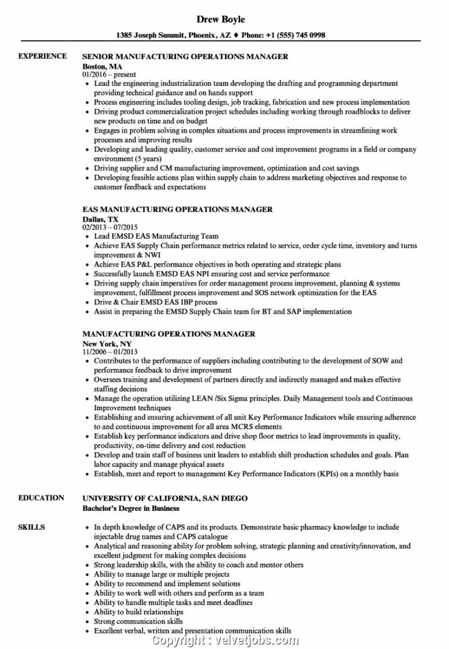 Professional Editable Sample Resume For Manufacturing Job Excel