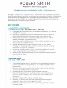 Free  Sample Resume For Insurance Agent Excel