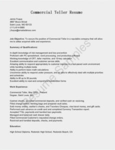 Professional Online Resume Without Work Experience Sample Pdf