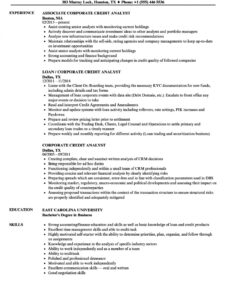 Printable Banking Business Analyst Resume Sample Excel